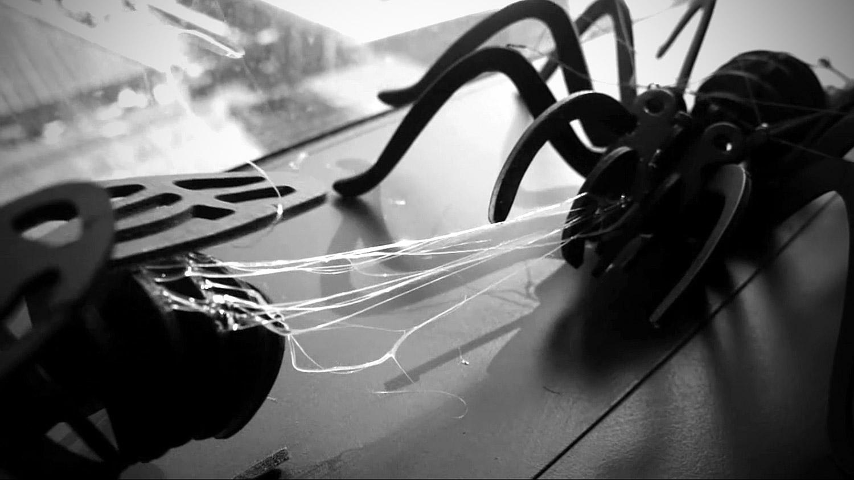 spider007